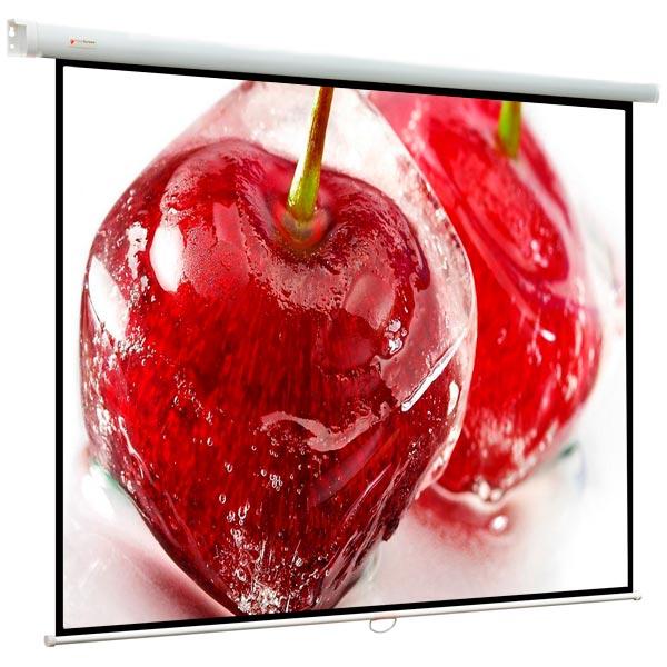 Купить Экран для видеопроектора ViewScreen в Барнауле