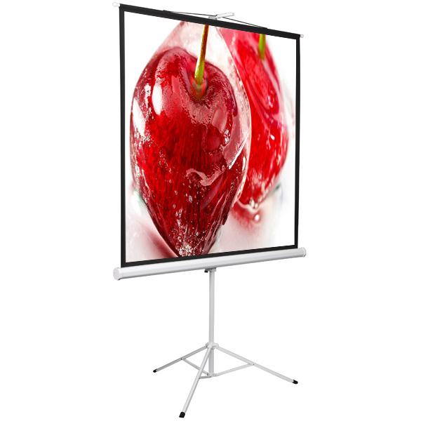 Купить Экран для видеопроектора Digis в Барнауле